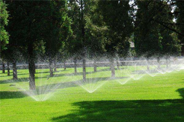 梦见灌溉、浇水、浇地