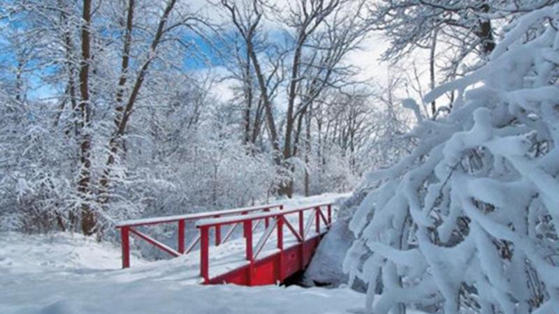 梦见下雪是什么征兆